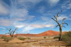 Dunes of Sossuvlei. Namibia Stock Image