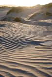 Dunes in sunset Stock Images