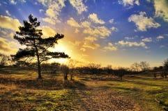 Dunes sunset Royalty Free Stock Image