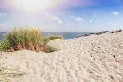 Dunes sur le rivage de la mer baltique, Neringa Images stock