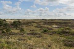 Dunes of Texel Royalty Free Stock Photo