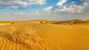 Dunes of Thar Desert, Rajasthan, India Stock Photography