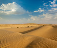 Dunes of Thar Desert, Rajasthan, India Royalty Free Stock Photos