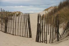Dunes of the Touquet , France Stock Photography