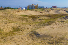 Dunes, vegetation and buildings at Cassino beach Stock Photos