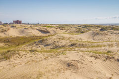 Dunes, vegetation and buildings at Cassino beach Royalty Free Stock Image