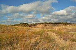 In the Dunes In Warren Dunes. A view from the sand dunes in Warren Dunes State Park in Michigan Royalty Free Stock Images