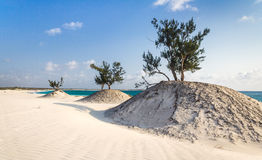Dunes and wild beach. In southern Madagascar Stock Images