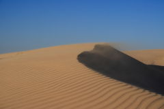 Dunes in wind. A windy day on the dunes in Qatar Stock Images