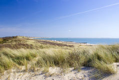 The dunes in Zoutelande, the Netherlands Royalty Free Stock Images