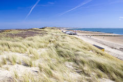 The dunes, Zoutelande, the Netherlands Royalty Free Stock Photo