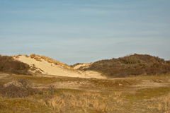 Dunes of the Zwin, nature reserve next to the Belgian coast Stock Images