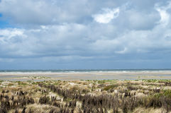 Dunescape Borkum Island, Germany Stock Images