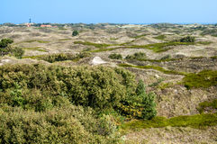 Dunescape Spiekeroog, Germany Royalty Free Stock Images
