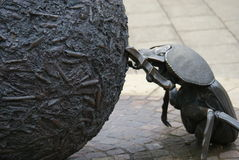 Dung Beetle Statue Stock Image