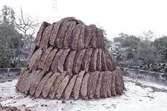 Dung cakes Royalty Free Stock Images