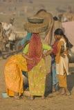 Dung Collectors of Pushkar Royalty Free Stock Photo