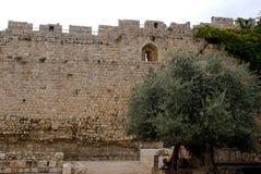 Dung Gate, Jerusalem, Israel Stock Images