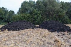 Dung heap. A dung heap on a mown grain field Stock Photography