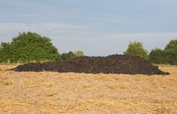 Dung heap. A dung heap on a mown grain field Stock Image