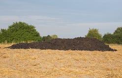 Dung heap. A dung heap on a mown grain field Stock Photo