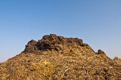Dung hill Royalty Free Stock Images