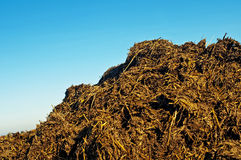 Dung hill Stock Images