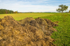 Dung hill Royalty Free Stock Photo
