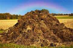 Dung hill with rainbow Royalty Free Stock Image