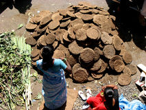 Dung Shop. A woman sells dried cowdung to be burnt to make the holy fire during the HOLI festival in India Royalty Free Stock Photos