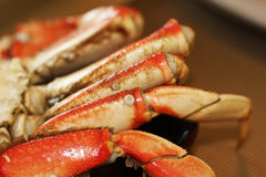 Dungeness Crab Legs Royalty Free Stock Photography