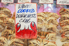 Dungeness Crab in Market Royalty Free Stock Photo