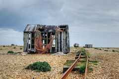 Dungeness Royalty Free Stock Image