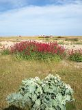 Dungeness. Headland, formed largely of a shingle beach in the form of a cuspate foreland. It shelters a large area of low-lying land, Romney Marsh Stock Images