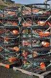 Dungeness-Krabbentöpfe Lizenzfreie Stockfotos