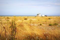 Dungeness Nature Reserve Kent England Royalty Free Stock Photography
