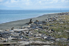 Dungeness spit Royalty Free Stock Images