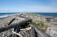 Dungeness Spit trail. Between surf and cal waters Royalty Free Stock Photos