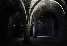 Dungeon wnętrza kasztel zdjęcie royalty free