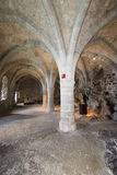 The dungeons of Chillon Castle, Switzerland royalty free stock photo