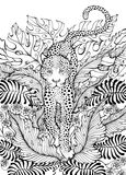dżungla lampart Obraz Stock