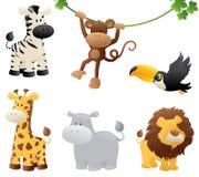 Dżungli zwierzęta Fotografia Stock