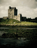 dunguaire замока стоковое изображение rf