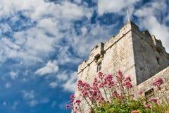 Dunguire Castle Stock Photos