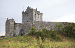 Dunguire castle during summer season in county Royalty Free Stock Photos