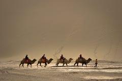 DUNHUANG, ΚΙΝΑ 11 ΜΑΡΤΊΟΥ: Η ομάδα τουριστών οδηγά τις καμήλες μέσα Στοκ Φωτογραφίες
