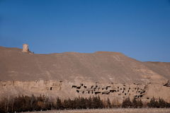 Dunhuang Mogao Grottoes ancient abandoned Royalty Free Stock Image