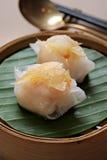 Dunkel summa, kinesisk kokkonst Royaltyfria Bilder