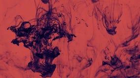 Dunkelblaue Flüssigkeit wirbelt über Rot stock footage