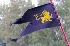 Dunkelblaue Flagge mit einem goldenen Drachen lizenzfreies stockfoto